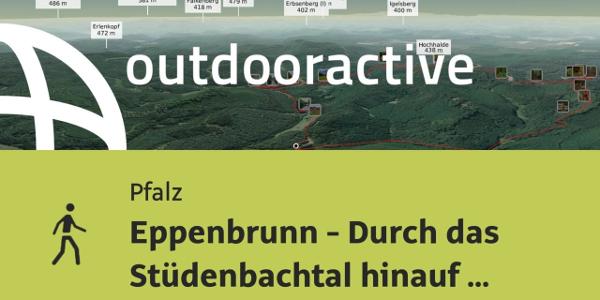 Wanderung in der Pfalz: Eppenbrunn - Durch das Stüdenbachtal hinauf zu den Altschlossfelsen