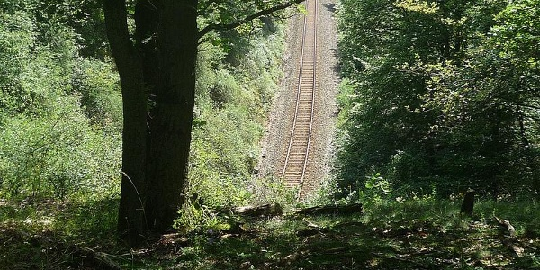 Hunsrückbahnwanderweg Tunnel