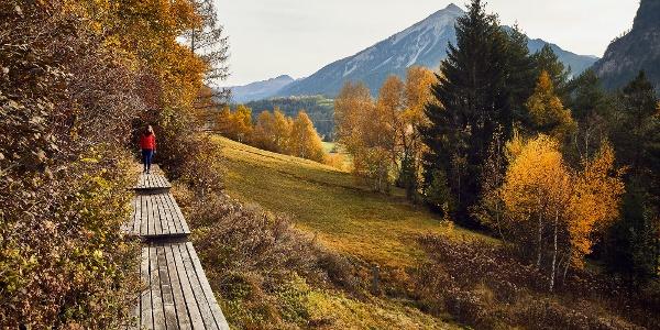 Wasserweg ansaina im Herbst, oberhalb von Alvaneu Bad © Giglio Pasqua