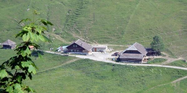 Alp Arni-Schwand
