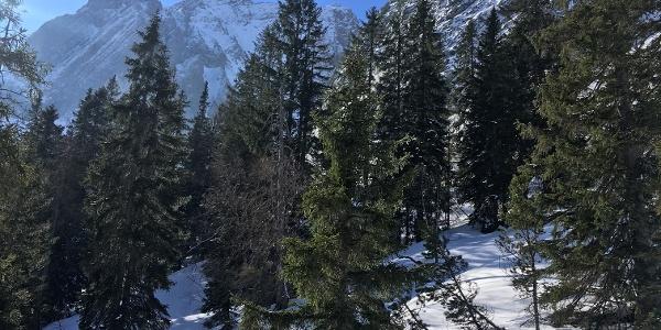 Blick in Richtung Hohe Wand (im Bild hinten links) - davor geht es rechts steil querend hinein ins Schwarzbachkar