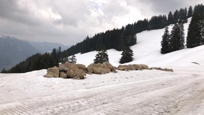 Die Schwanden-Alpe ist abgebaut.