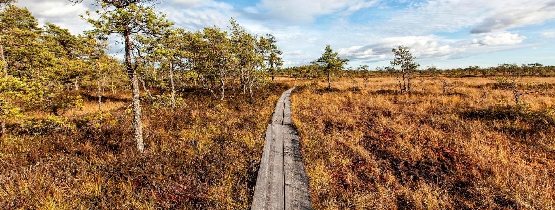 Landschaft im Valkmusa-Nationalpark