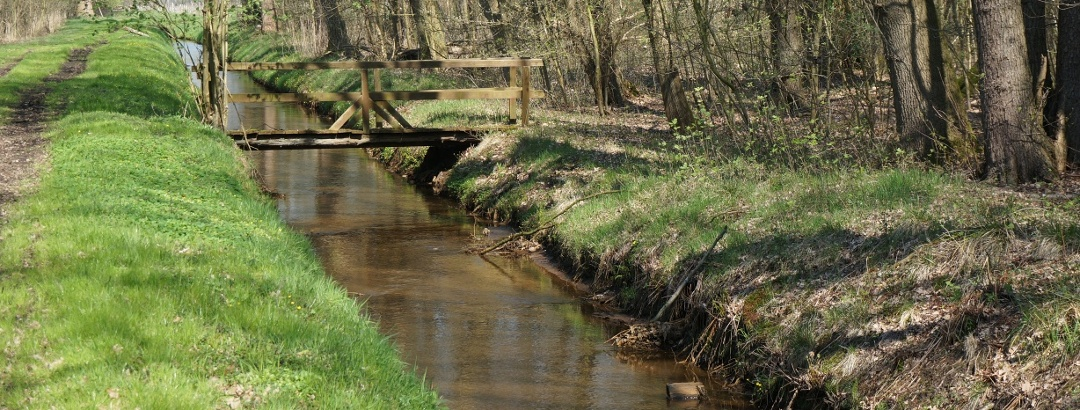 TERRA.track Fienenmoor - Brücke über dem Entwässerungsgraben
