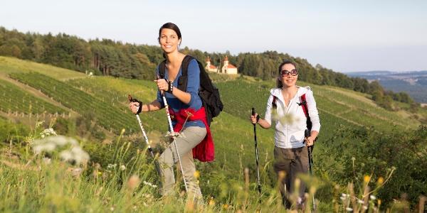 Wandern entlang der weingärten(c) bernhard bergmann