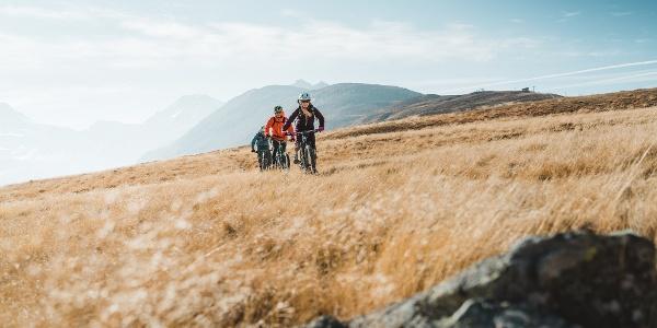 Mountainbiken zu Beginn des Abstiegs von Gspon nach Brig
