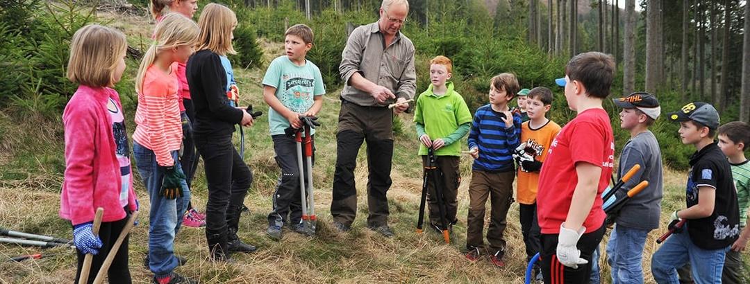 Wisent Wildnis Waldpädagogik 2