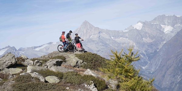 3 Mountainbiker admiring the view of the mountains