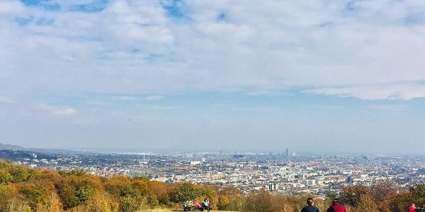 Blick vom Lainzer Tiergarten auf Wien