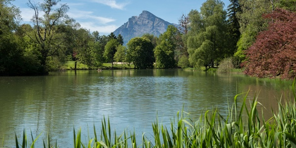 Der Giessenpark  in Bad Ragaz mit natürlichem See