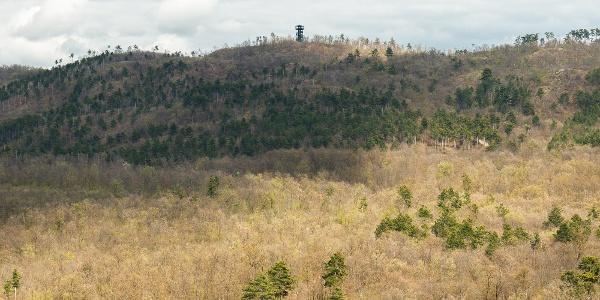 A Pető-hegy tetején álló Berzsenyi-kilátó a Festetics-kilátóból nézve