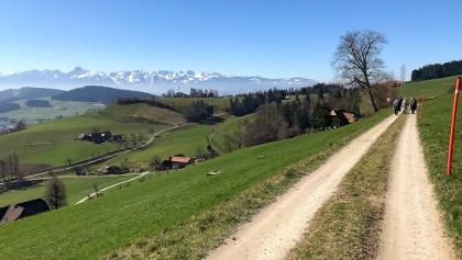 Auf dem Alpenpanoramaweg zwischen Hubel und Ballenbühl.