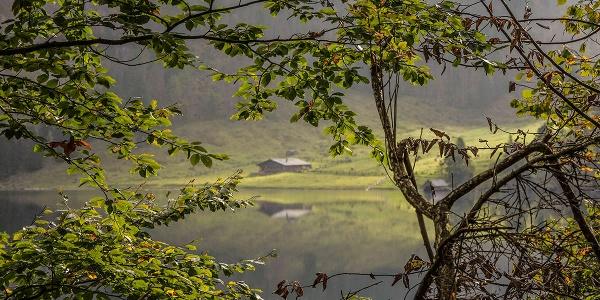 <![CDATA[Blick über den Obersee zur Fischunkelalm]]>