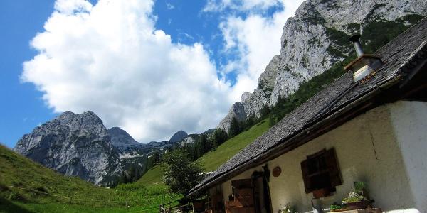 <![CDATA[Die Halsalm im Nationalpark Berchtesgaden]]>