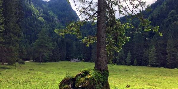 <![CDATA[Die Eckaualm am Hochkalter im Bergsteigerdorf Ramsau]]>