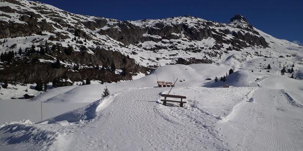 Winterwanderung Rundweg Bettmersee - Alpstallung