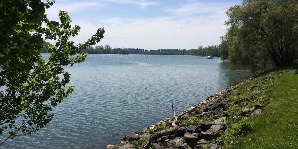 Rhein bei Beinheim