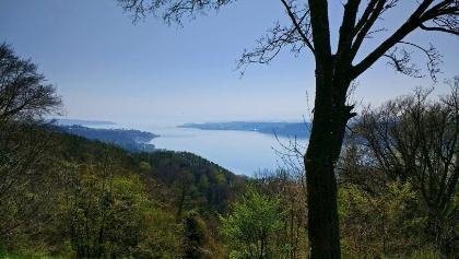 Aussicht vom Haldenhof