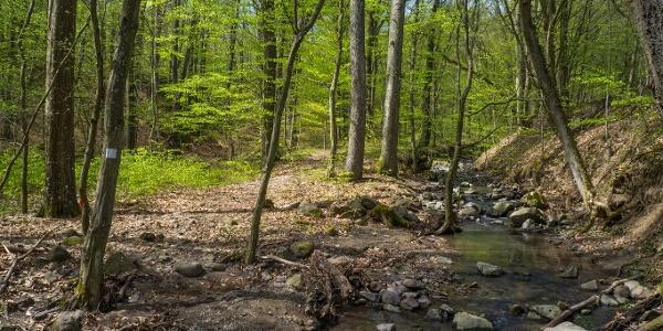 A Nagy-Vasfazék-patak kőszállítmánya
