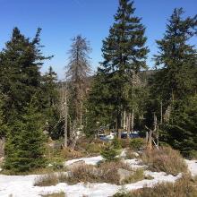 Noch liegt Schnee in einigen Senken...