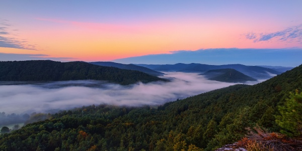 Panoramablick über den Pfälzerwald