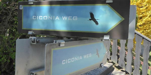 Markierung: CICONIA