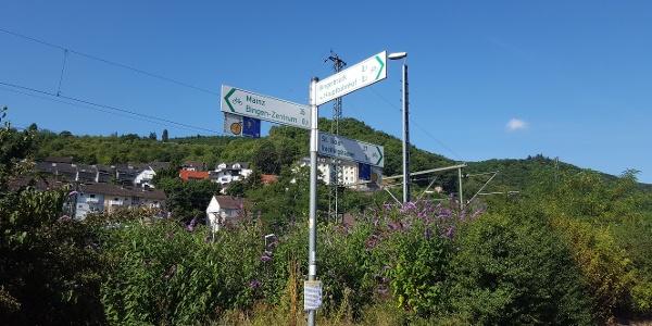 Wegweisung Rheinradweg
