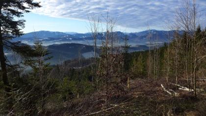 Ausblick nahe der Gföhlberghütte