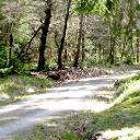 Der Höhenweg in der Endphase - Noch 3,2 Kilometer bis Wunsiedel