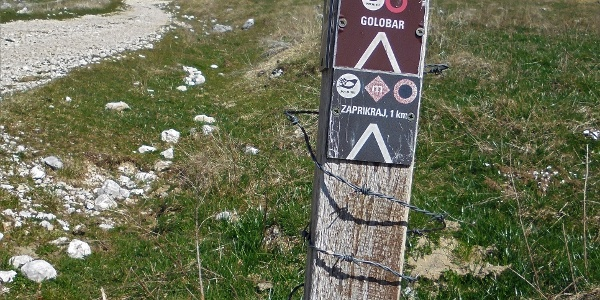 Signposts along the trail