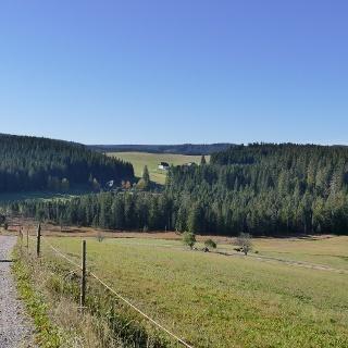 Schwarzwaldhöhen bei Schonach