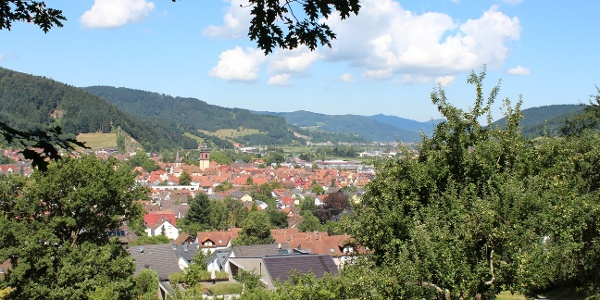 Blick vom Rotkreuz auf Haslach