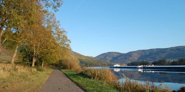 Moselle Cycle Trail next to Lieser