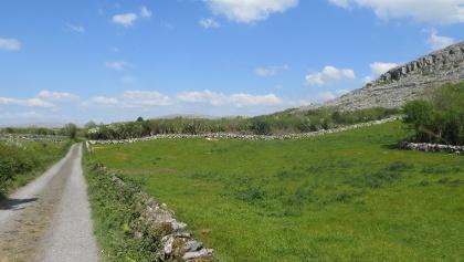 Durch die Landschaft des Burren