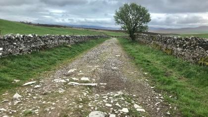 Rough Rocky Lane