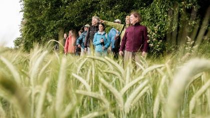 Wandergruppe auf dem 'Weg für Genießer'
