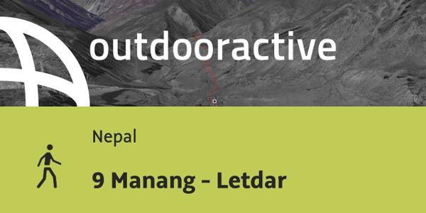 Wanderung in Nepal: 9 Manang - Letdar
