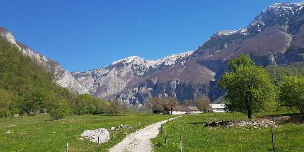 Polog Mountain pasture