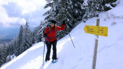 Kurz vor der Gipfel-Bergstation