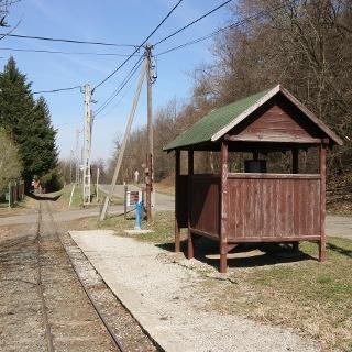 A Kemencei Erdei Múzeumvasút Csarnapuszta megállóhelye