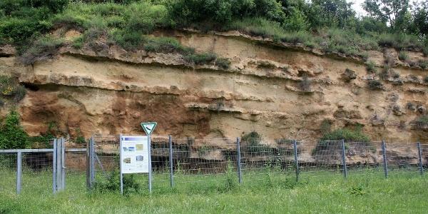 Naturdenkmal Weinheimer Trift