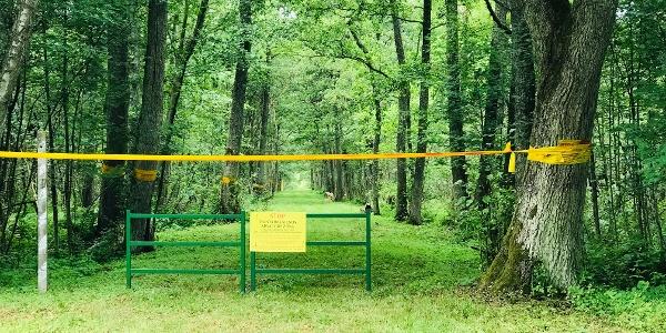 Grüne Grenze nach Russland