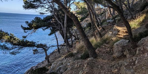 Der alte Küstenweg 'Cami des Castellet zum Aussichtspunkt'