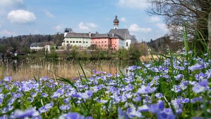 <![CDATA[Kloster Höglwörth am gleichnamigen See im Rupertiwinkel]]>