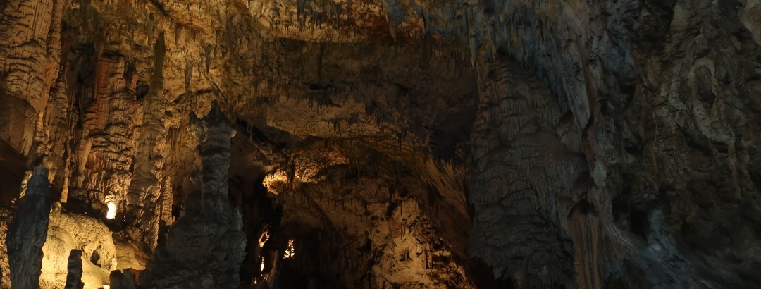 In der Postojna Höhle