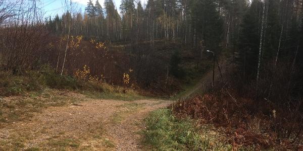 Vuoksenniska forest trail and geological sites