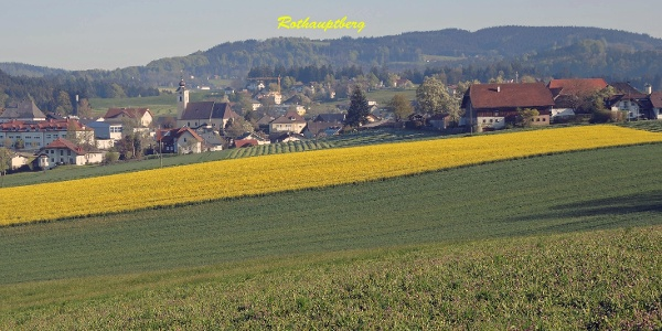 Blick von Ortschaft Haid Richtung Neukirchen