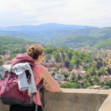 Blick vom Schloss auf Wernigerode