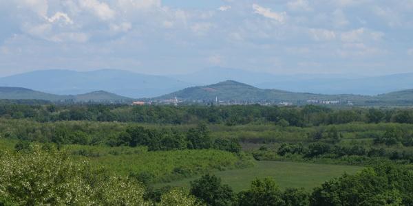 Tiszta időben a Kárpátok bércei is látszanak a tarpai Nagy-hegyről