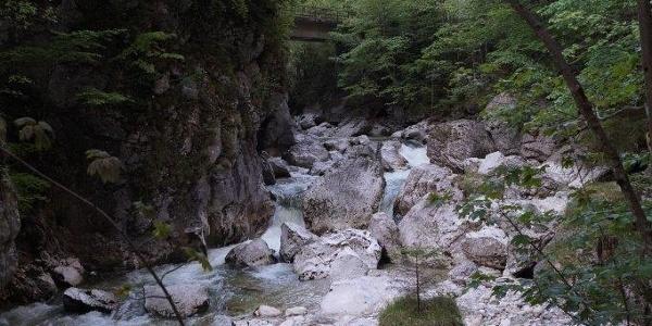 Wandern entlang des Steinbachs